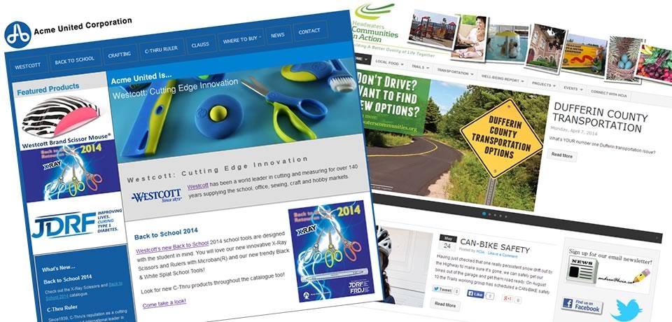 Customized web sites or WordPress customization